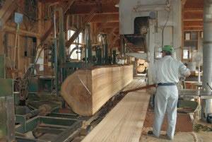 天然木の加工
